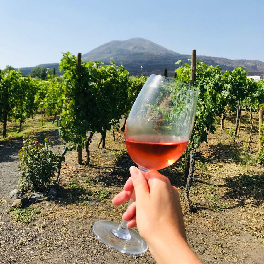wijnproeverij vesuvius